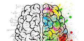 rosnijwsile.pl jak poprawić pamięć i sprawność umysłową mózgu?
