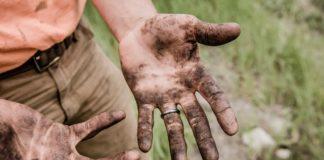 rosnijwsile.pl Dlaczego ciężka praca nie daje efektów? Co może zniweczyć ciężka pracę.