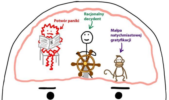 Jak działa mózg prokrastynatora? Sposoby na prokrastynację i odkładanie na później.