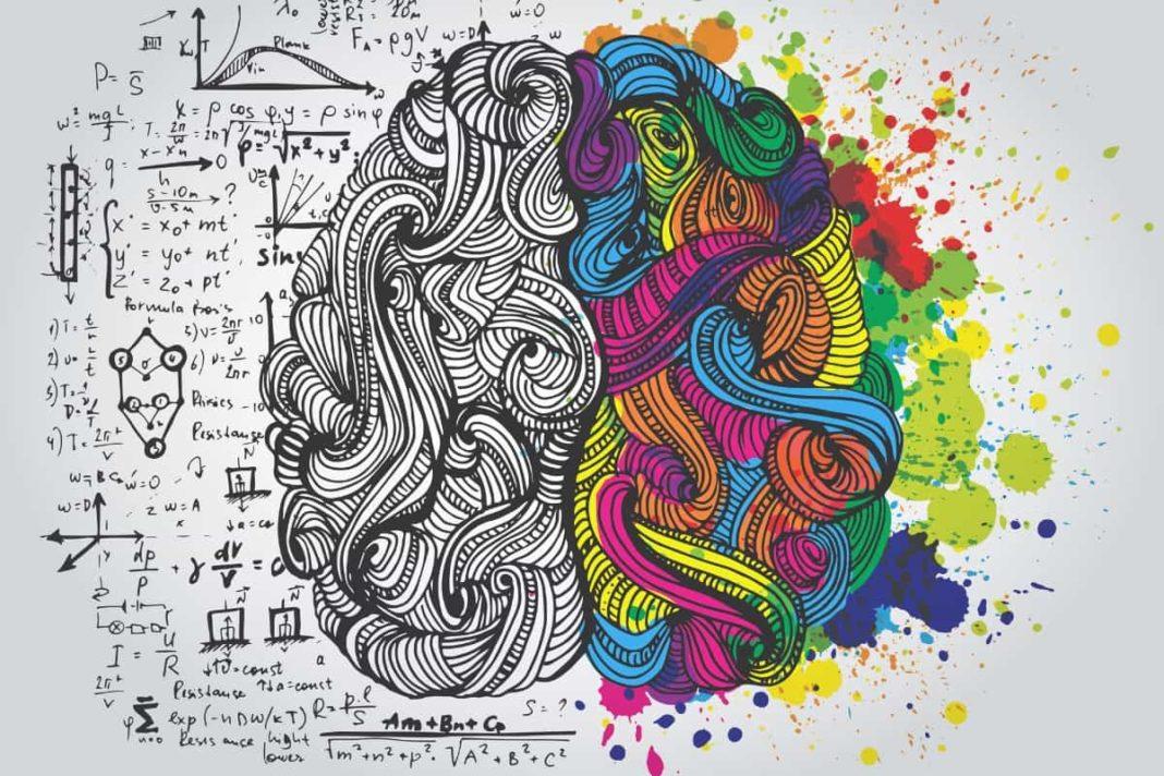 rosnijwsile.pl FLOURISH - Jak dbać o mózg? 8 składników rozwoju mózgu i ciała