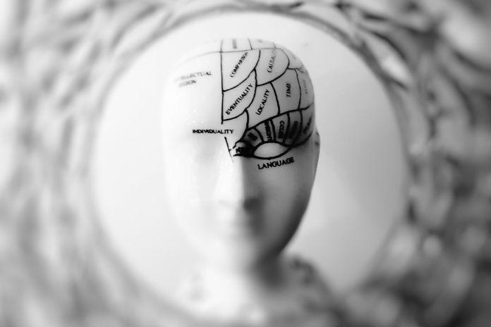 Jak dbać o mózg? Użyteczność