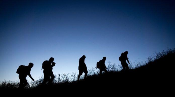 rosnijwsile.pl Skuteczne przywództwo. Jak przewodzą najlepsi liderzy? 7 kluczowych obowiązków lidera