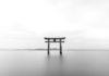 rosnijwsile. Jak zwiększyć efektywność? Zen to Done (ZTD) świetna alternatywa dla Getting Things Done (GTD)