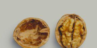 rosnijwsile.pl Jak mieć zdrowy mózg? 12 zdrowych produktów które zwiększają sprawność mózgu