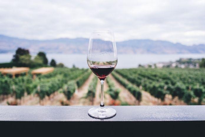 12 zdrowych produktów które zwiększają sprawność mózgu i umysłu - czerwone wino