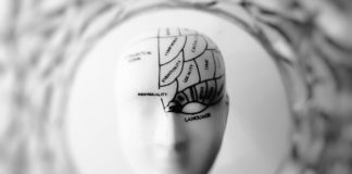 rosnijwsile.pl 5 sposobów jak zwiększyć swój iloraz inteligencji (IQ)
