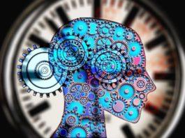 rosnijwsile.pl 8 przydatnych ciekawostek psychologicznych, które ułatwią Ci życie.