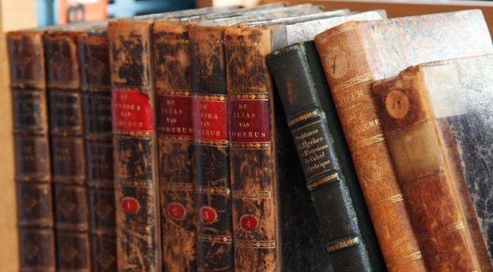 rosnijwsile.pl 7 praw mądrości od antycznych filozofów