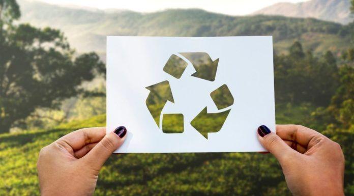 Less waste a promocje, czyli jak zniżki przyczyniają się do zrównoważonego stylu życia!
